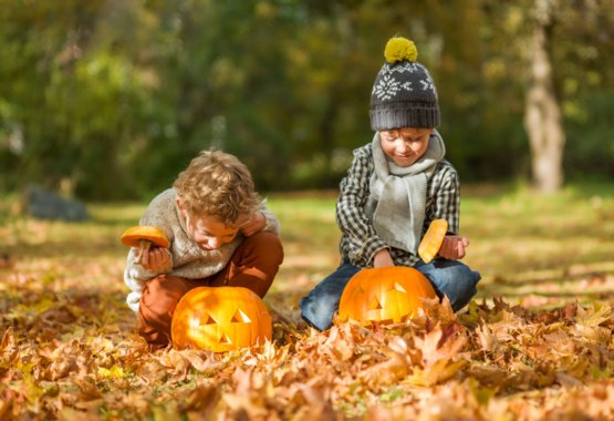 Trick or Treat med Fiskars